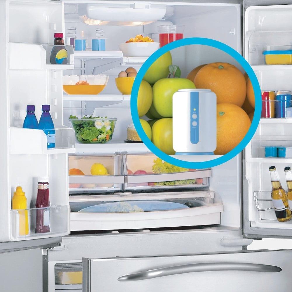 fridgesmells